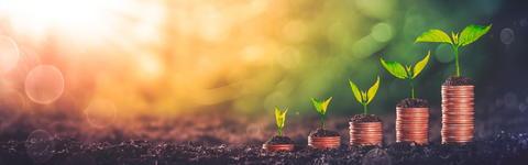 成長している製品への投資 VS 将来への投資